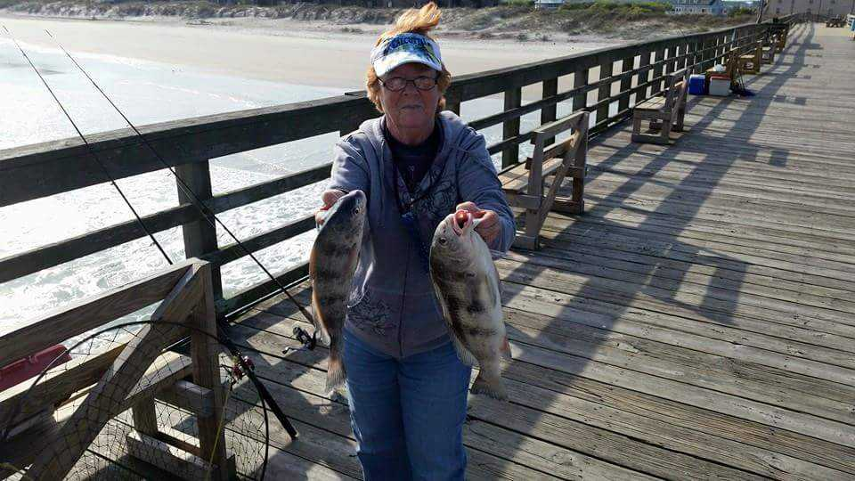 Pier And Surf Fishing Forecast June 2015 Coastal Angler