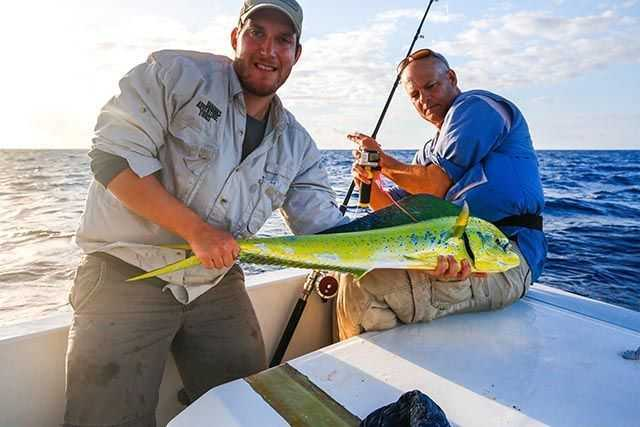 Zach Zuckerman, researcher at Cape Eleutherate, Eleuthera, releasing a tagged mahi-mahi as part of a project that tracks the migration pattern of this species. PHOTO CREDIT: Erik Kruthoff.