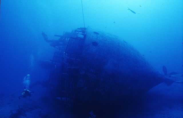 Theo's Wreck, always teeming with life, is one of the largest wrecks in The Bahamas. PHOTO CREDIT: Sunn Odysseey Divers.