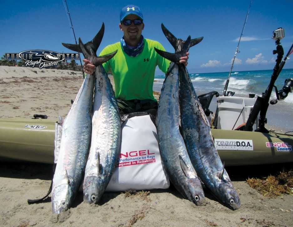 Kayak fishing report july 2015 coastal angler the for Northeast saltwater fishing reports