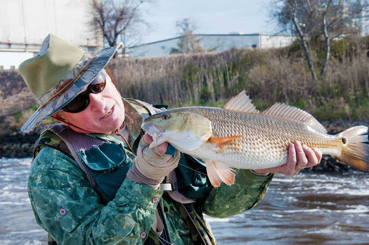 Fly fishing the flood tides for redfish coastal angler for Fly fishing for redfish