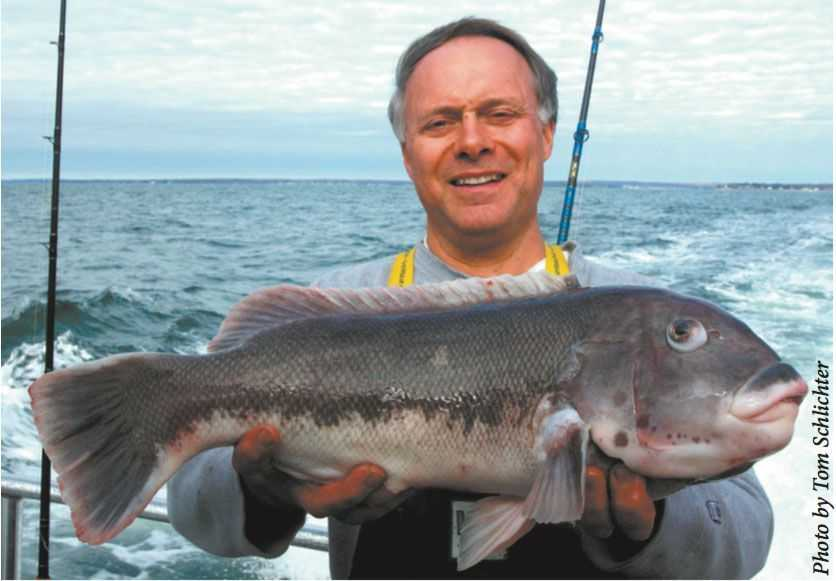 Calm, drizzly days are ideal for battling big blackfish. These lucky anglers scored with bulldogs aboard Freeport's Capt. Lou Fleet.