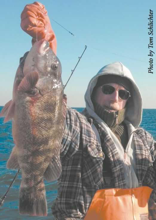 Here's Bob Sullivan with a nice bulldog taken in late November aboard the Freeport charter boat Codfather. A white crab proved this blackfish's undoing.