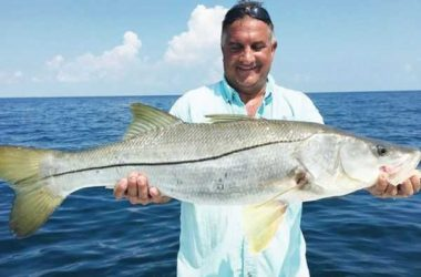 Sebastian inlet offshore fishing report april 2015 for Sebastian fishing report
