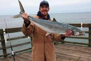 Pier and Surf December 2015 Fishing Report   Coastal Angler