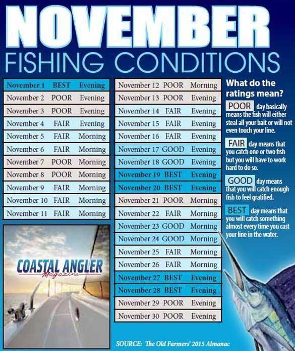 Stuart jensen beach deep sea fishing report and forecast for Best day to fish