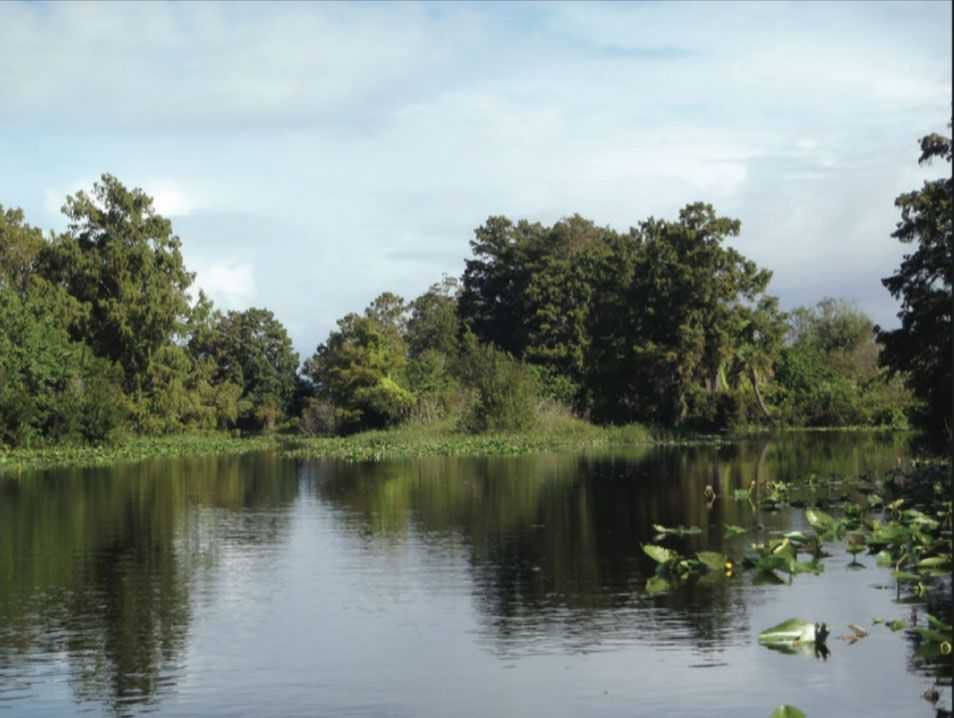 Contact Capital One >> Fishing Central Florida Canals | Coastal Angler & The Angler Magazine