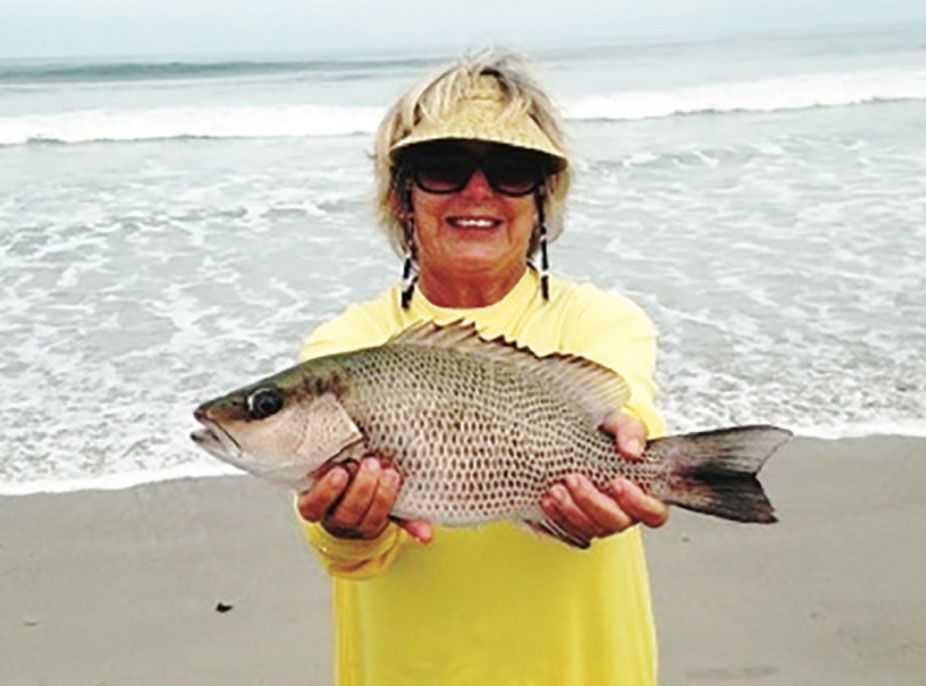Surf fishing forecast nov 2015 coastal angler the for Long island surf fishing report