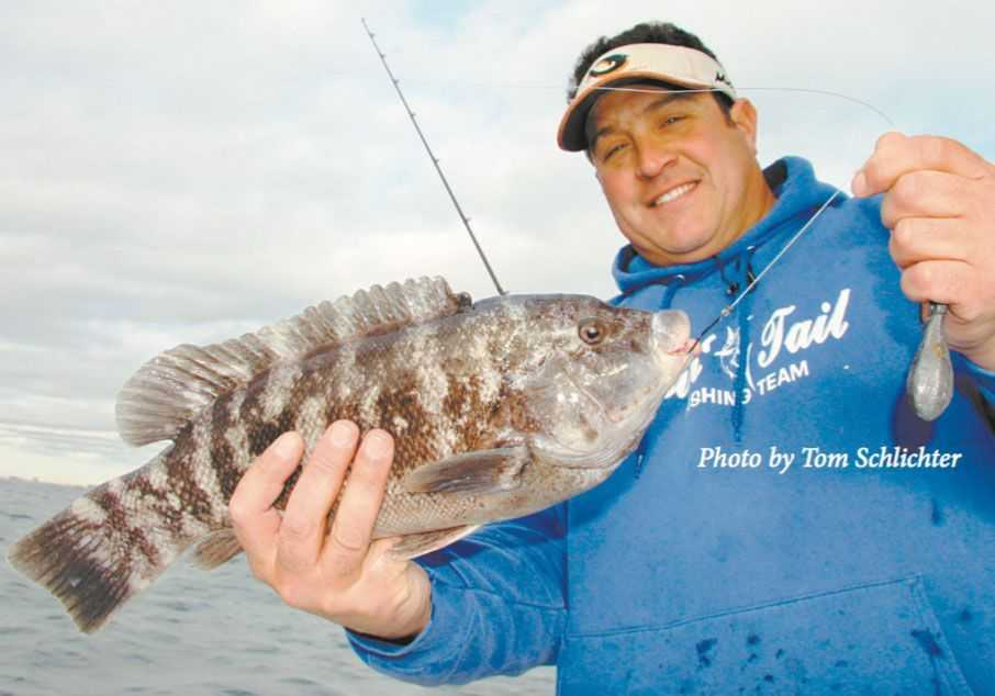 Late season blackfishing can be a bumpy ride but the rewards can be a ton of fun. Here's Capt. Joey Leggio of Chasin' Tail charters with a late December bruiser.