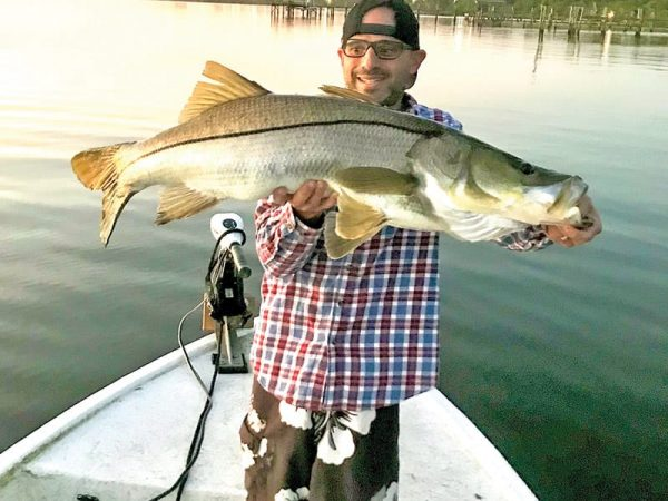 Eric P. hooked this 39-inch snook on the Indian River in Melbourne with a D.O.A. shrimp.