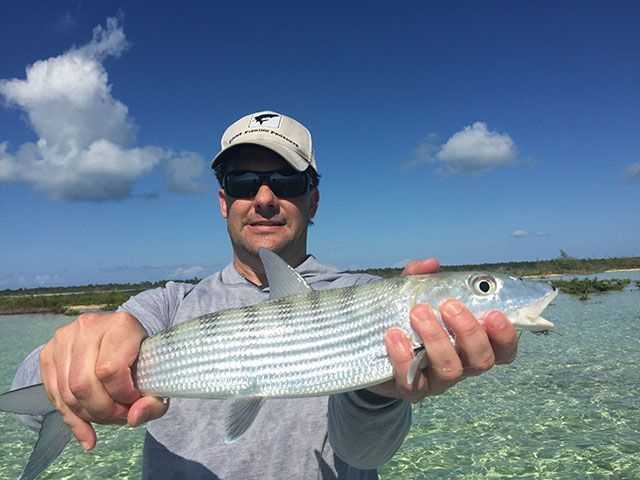 Grand bahama inshore fishing report and forecast february for Southeast florida fishing report