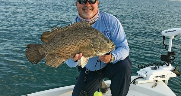 "Capt. Jim Ross with a nice ""eating sized"" tripletail."