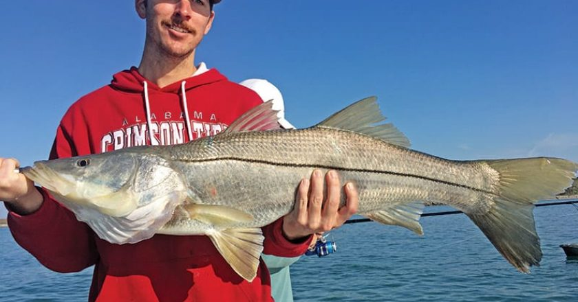 Snook fishing around the Port will be hot this month!