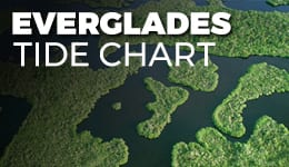 Everglades Tide Charts