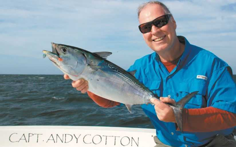 The waters around Sarasota offer great flats fishing inside the bays and plenty of false albacore, tripletail and Spanish Mackerel just outside the inlets. Photo by Felicia Scocozza.