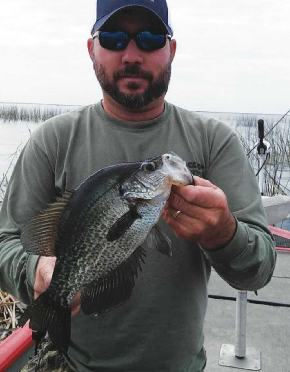 100 Cape Cod Bay Fishing Report Spring 2017 Striped  : north end okeechobee fishing report from 45.32.79.15 size 1000 x 1282 jpeg 68kB