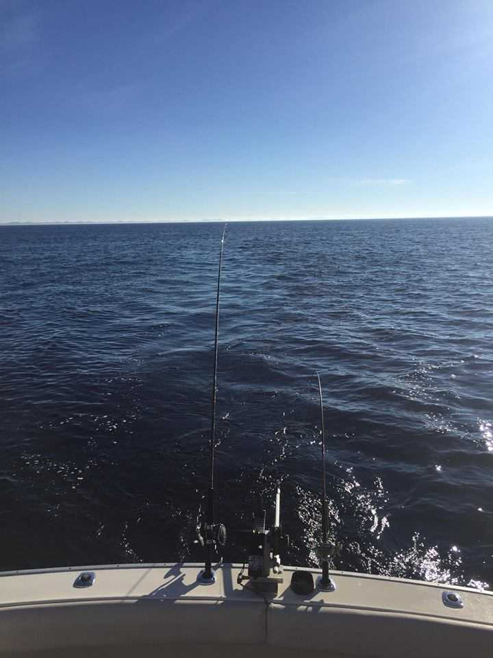 Grand haven fishing report april 2016 coastal angler for Grand haven fishing report