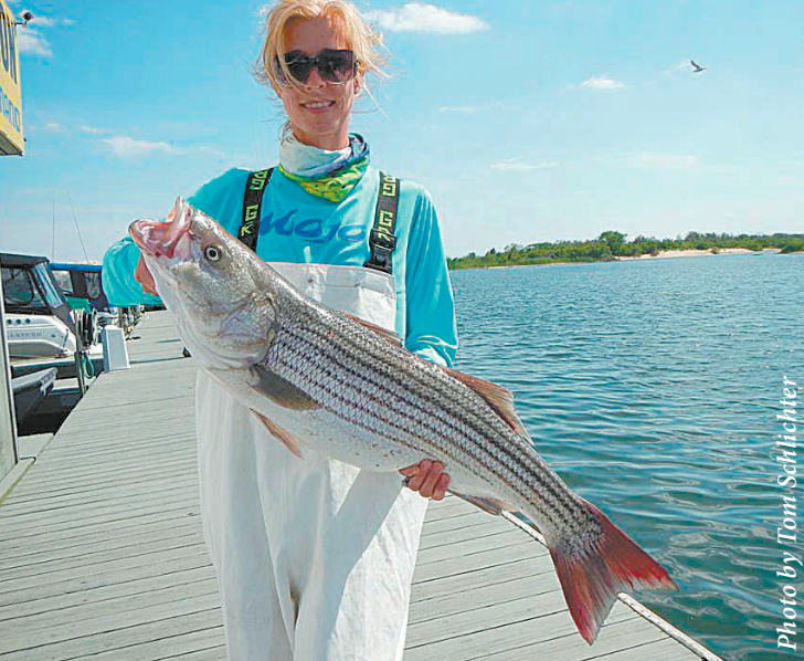 Word on the bite striper fish coastal angler the for Bunker up fishing