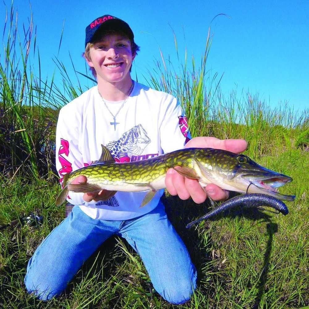 Floridas Chain Pickerel Coastal Angler Amp The Angler
