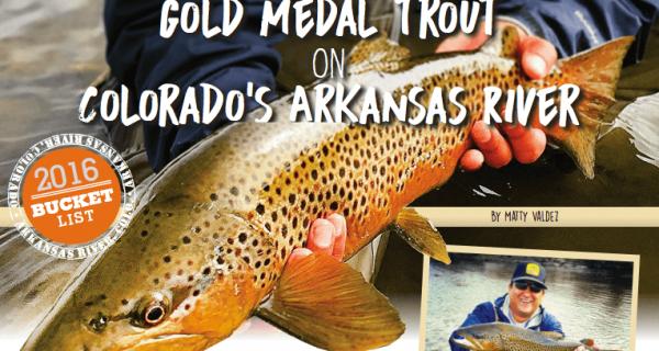 Gold Medal Trout On Colorado Arkansas River