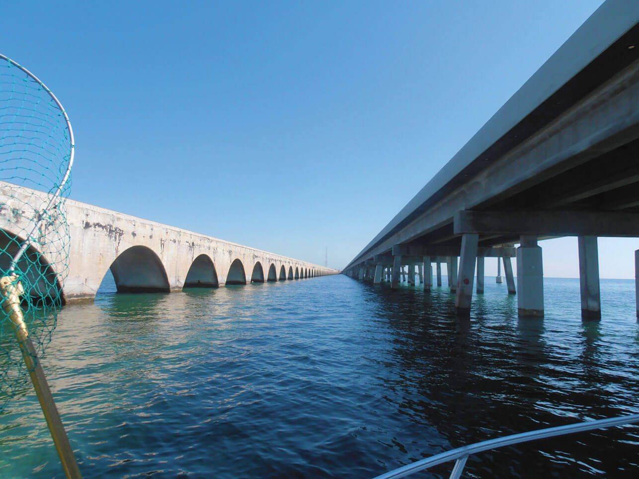 Honda Fort Lauderdale >> Keys Tarpon Fishing | Coastal Angler Magazine
