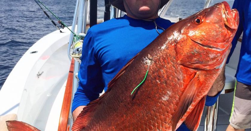 Herradura Fishing Forecast