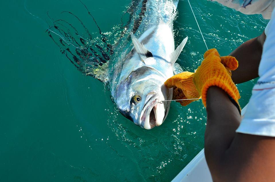 Southern Zone Fishing Costa Rica