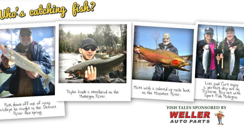 West Michigan Fishing Archives | Coastal Angler & The Angler