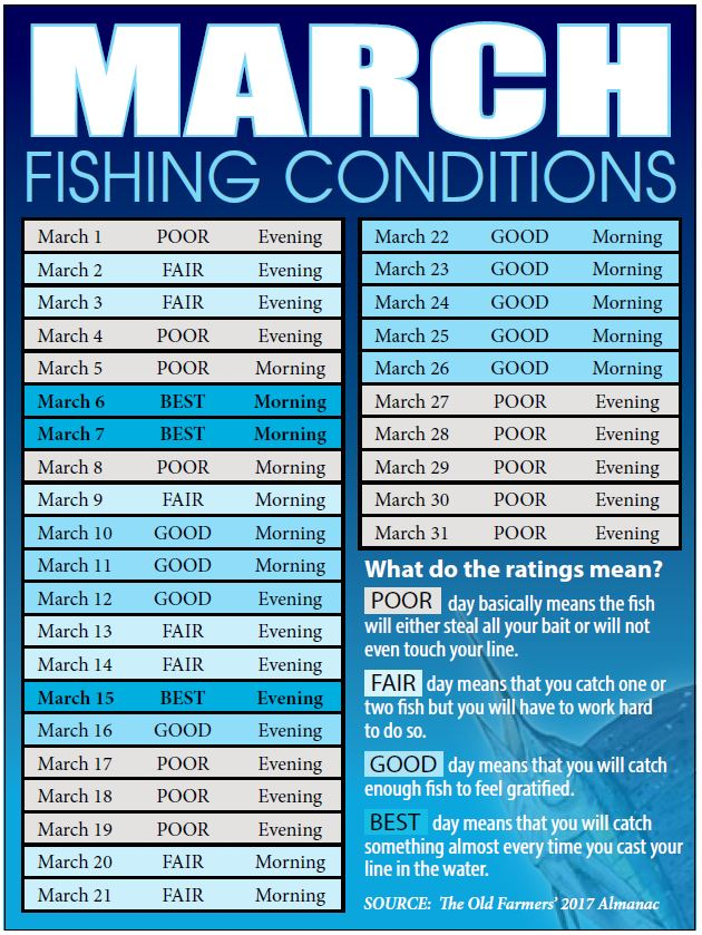 Bahamas fishing reports forecasts news articles for Best fishing days