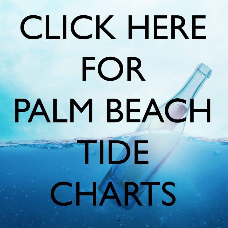 Palm Beach Tide Chart Coastal Angler The Angler Magazine