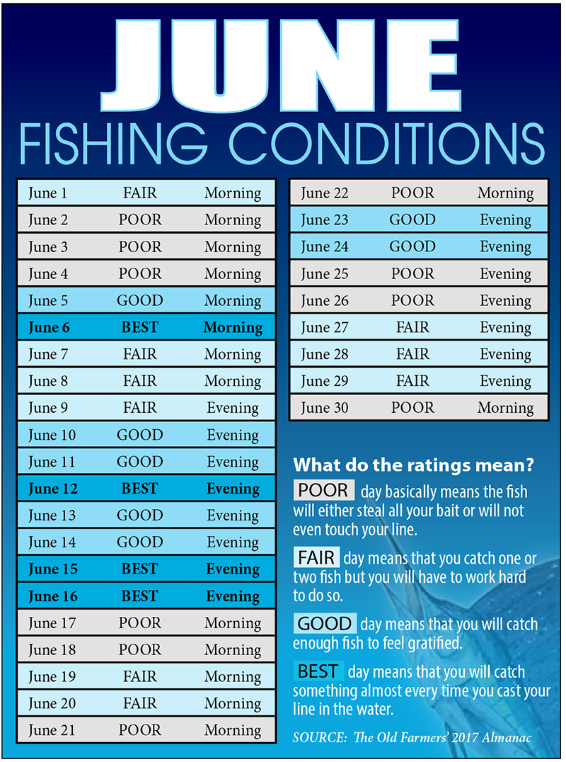 Treasure coast fishing reports forecast news articles for Florida fishing calendar