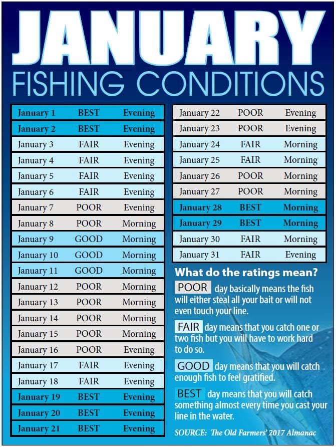 Treasure coast fishing reports forecast news articles for Good fishing times