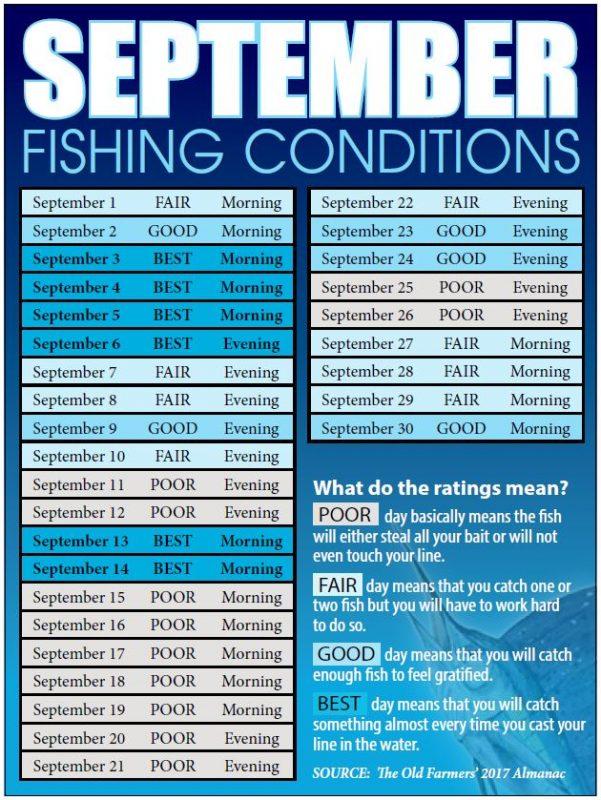 Treasure coast fishing reports forecast news articles for Treasure coast fishing report