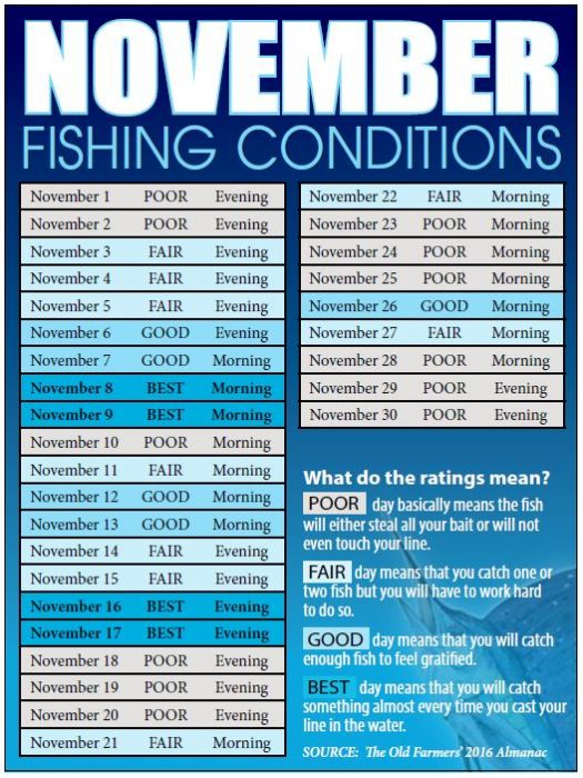 Coastal angler magazine bahamas edition coastal angler for Best fishing days