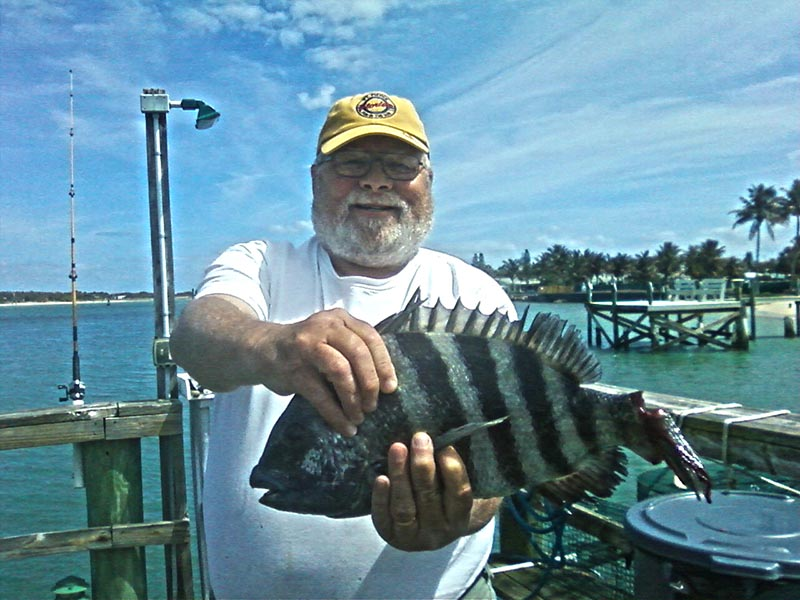 Fort pierce inshore nearshore fishing report and forecast for Indian river inlet fishing tips