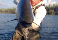 J.E.B. Hall Asheville fishing report