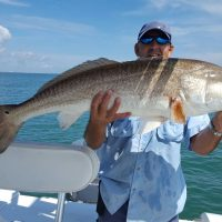 treasure-coast-redfish