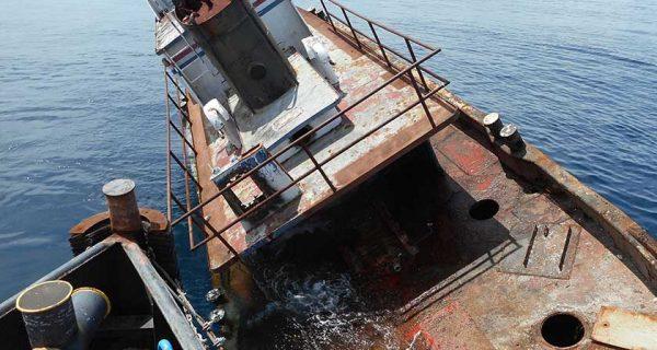 Treasure coast fishing reports forecast news articles for Lady stuart deep sea fishing
