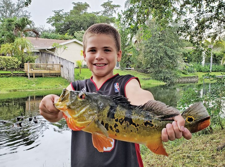 Nick Dyer with a backyard peacock bass!