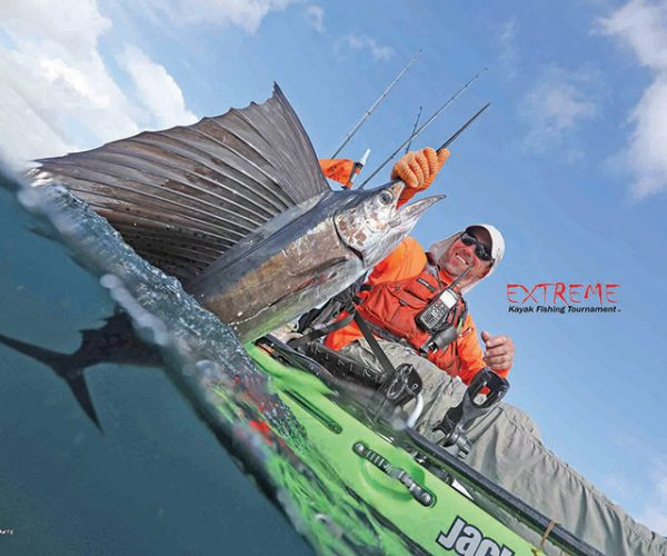 January is a great month for kayak anglers to target sailfish.