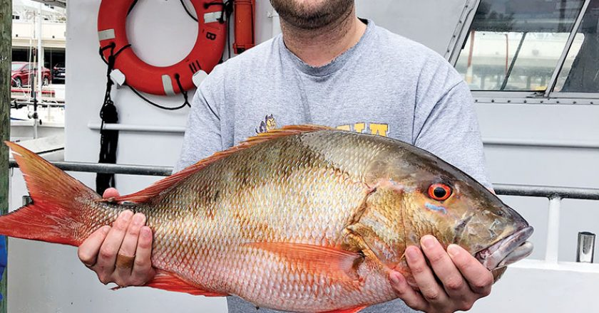 Big mutton snapper caught with Fishing Headquarters.