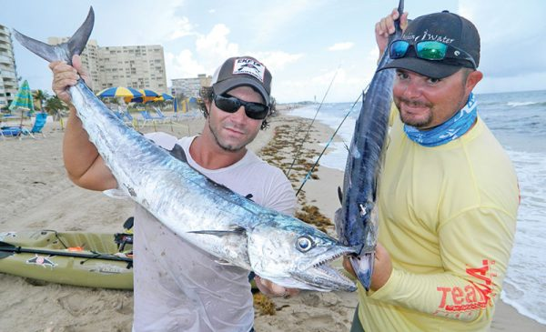 Joe Hector and Brian Nelli with a pair of kingfish caught from kayaks.