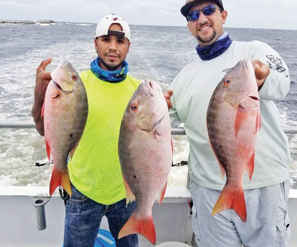 The mutton snapper are biting on both the day and night trips.