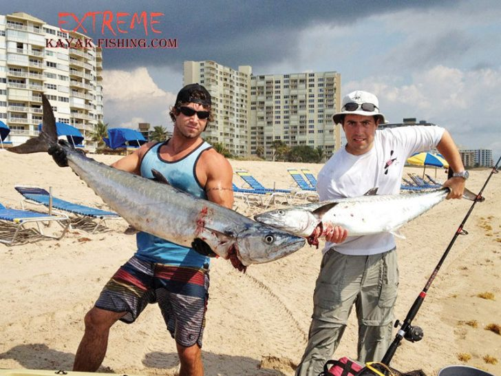 November is a great month to target kingfish from a kayak.