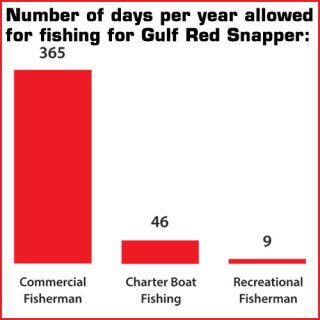 commercial fishing for red snapper 6412609 academia
