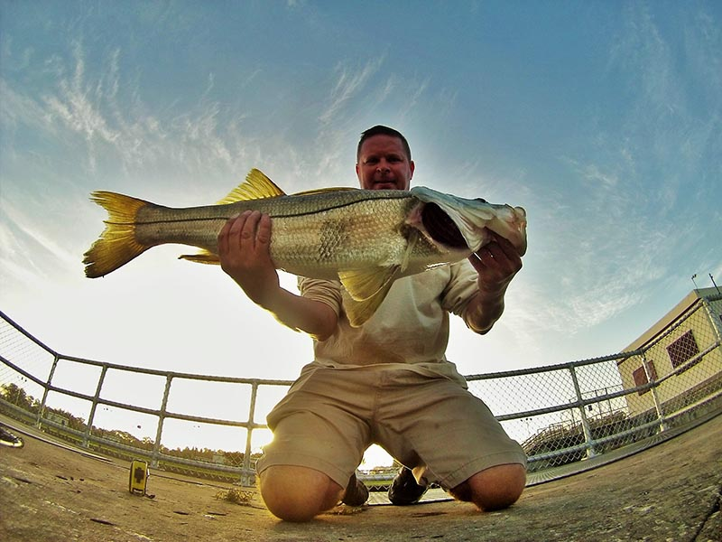 Treasure Coast From The Shore Fishing Report And