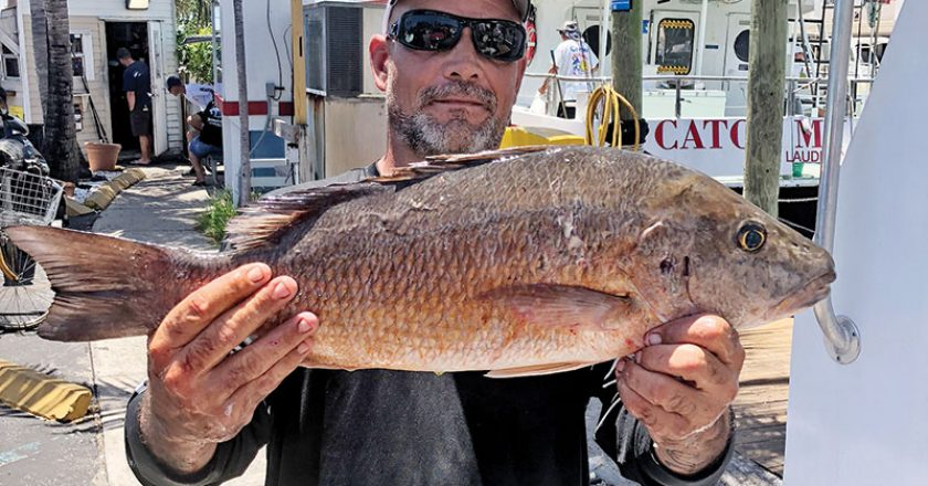 Waylan with a big mangrove snapper he caught on the Catch My Drift.