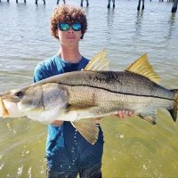 Chris Marconi caught a monster snook!
