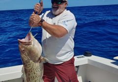 Another quality gag grouper coming over the rails on the Seas Fire.