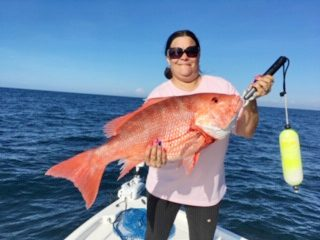 One of the endangered unicorn (A.K.A. red) snapper that anglers will be able to harvest on select dates this month.